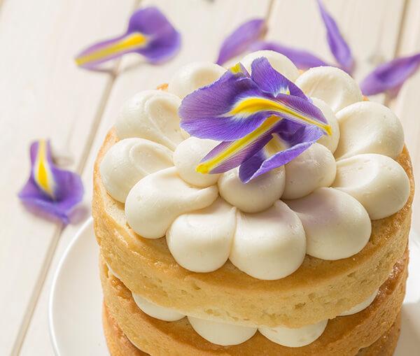 Vegan Floral Layer Cake using Macphie Vegan Cake Mix