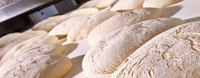 IREKS Dried Wheat Sour - Bloomers